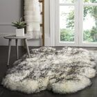 Dax Ivory / Smoke Gray Area Rug Rug Size: Rectangle 3'7