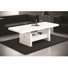 Celine Lift Top Coffee Table Color: White Gloss
