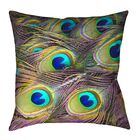 Helsel Peacock Feathers Outdoor Throw Pillow Size: 20