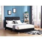 Loc Tufted Upholstered Panel Bed Size: King, Color: Black