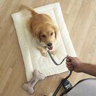 Adventure Crate Dog Mat Size: X-Large (42