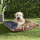 Annemarie Outdoor Pipe Dog Pillow Color: Gold/Red/Blue, Size: 28