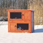 Lowman 2 Story Small Animal Insulated Hutch