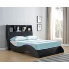 Eyler Platform Bed Size: Full, Color: Black