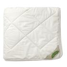 Wash N' Snuggle All Season Comforter Size: Twin