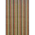 Hand Woven Indoor/Outdoor Area Rug
