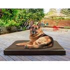 Billy Deluxe Ortho Mat Pet Bed Color: Espresso, Size: Small (20