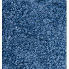KIDPlush Solids Pacific Blue Area Rug Rug Size: 4' x 6'