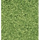 Kid Plush Solids Limeaid Area Rug Rug Size: 6' x 9'