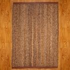 Abaca Treasure Area Rug Rug Size: Rectangle 8' x 10'
