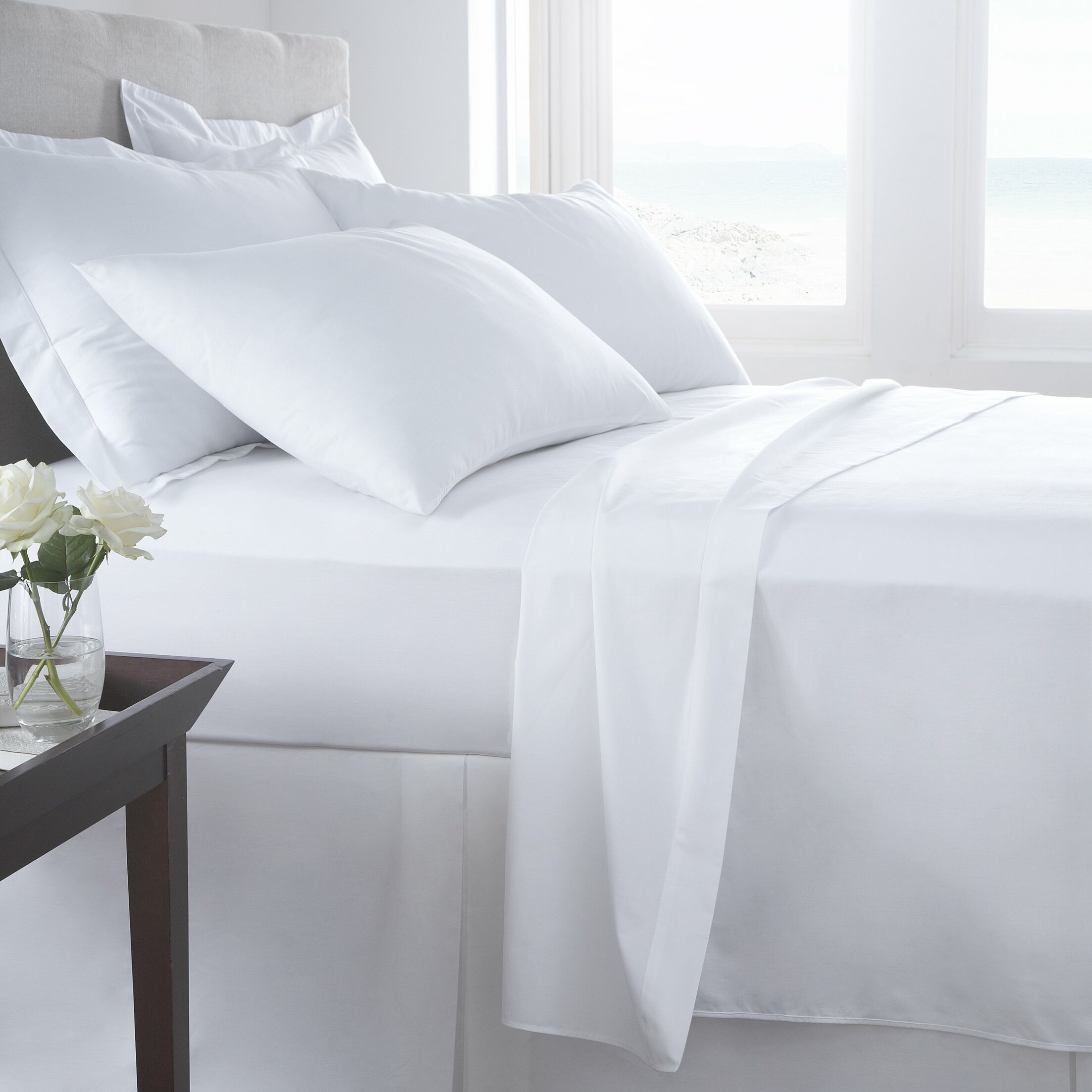 500 Thread Count 100% Cotton Solid Sheet Set Size: Queen, Color: White