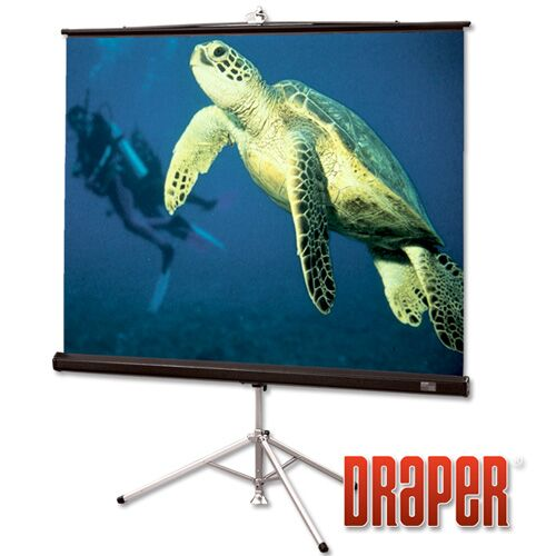 Diplomat/R with Carpeted Case Matt White Portable Projection Screen Size/Format: 94