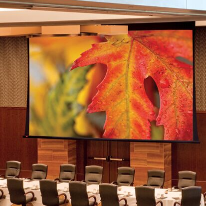 Paragon/Series V White Electric Projection Screen Size/Format: 250