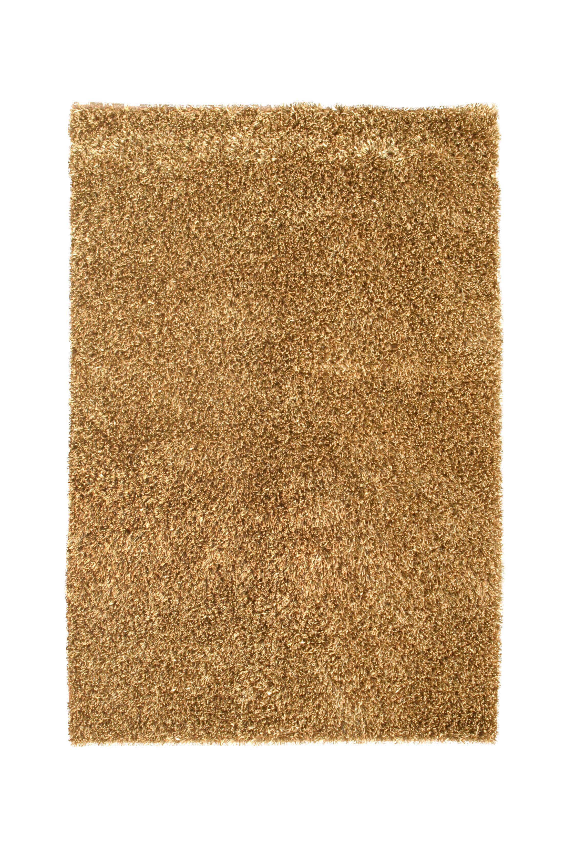 Sheen Brown Rug Rug Size: 8' x 11'