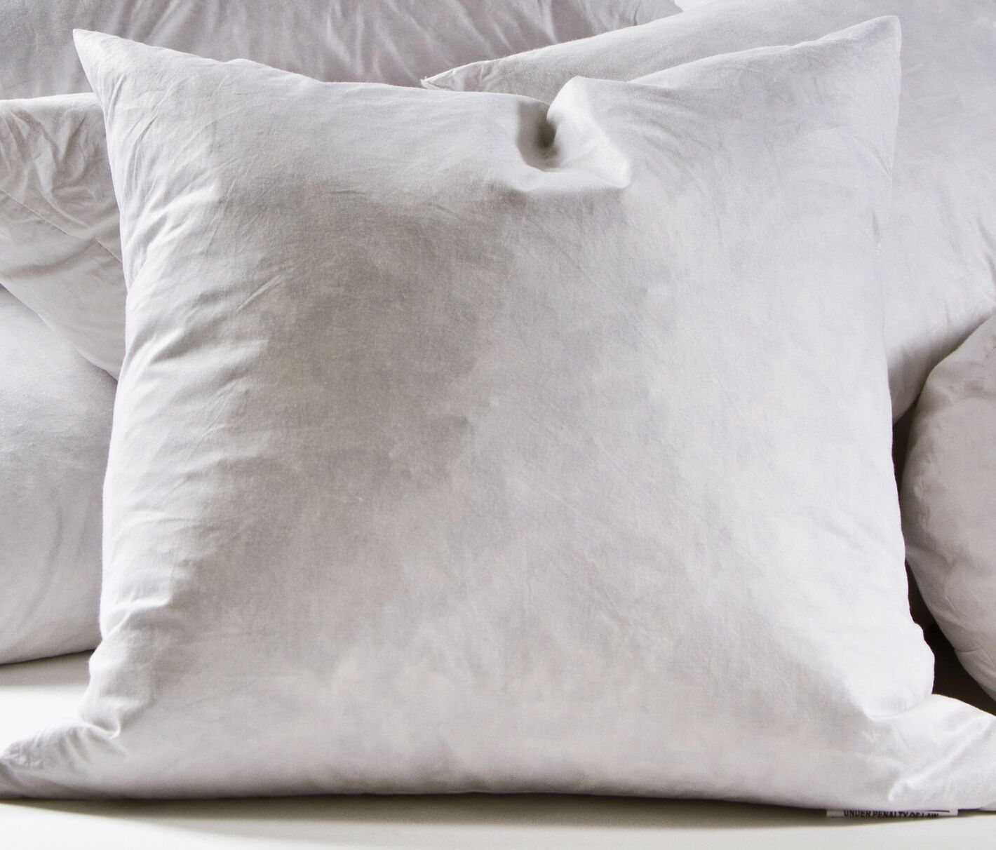 Decorative Cotton Pillow Insert Size: 28