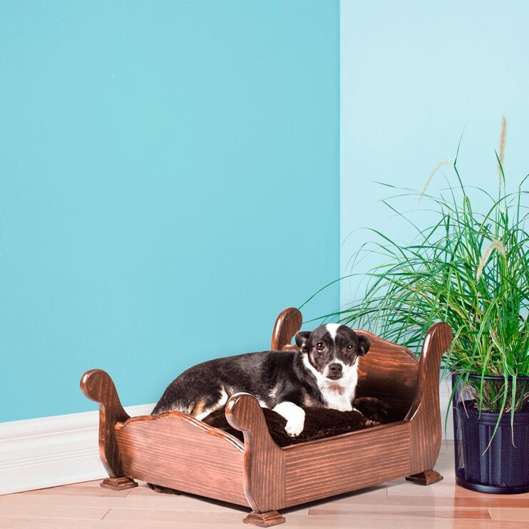Woodbourne Dog Bed