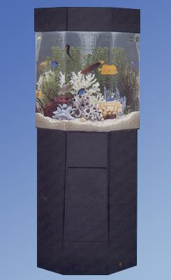 Aqua 35 Gallon Custom Pentagon Aquarium with Stand