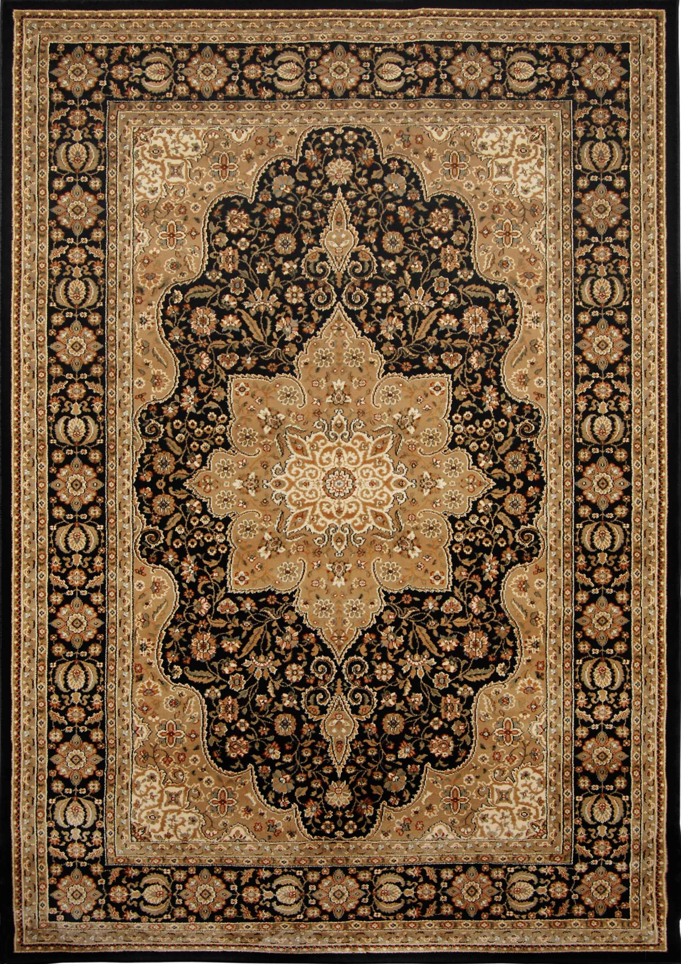 Triumph Woven Black Oriental Rug Rug Size: Rectangle 5'2
