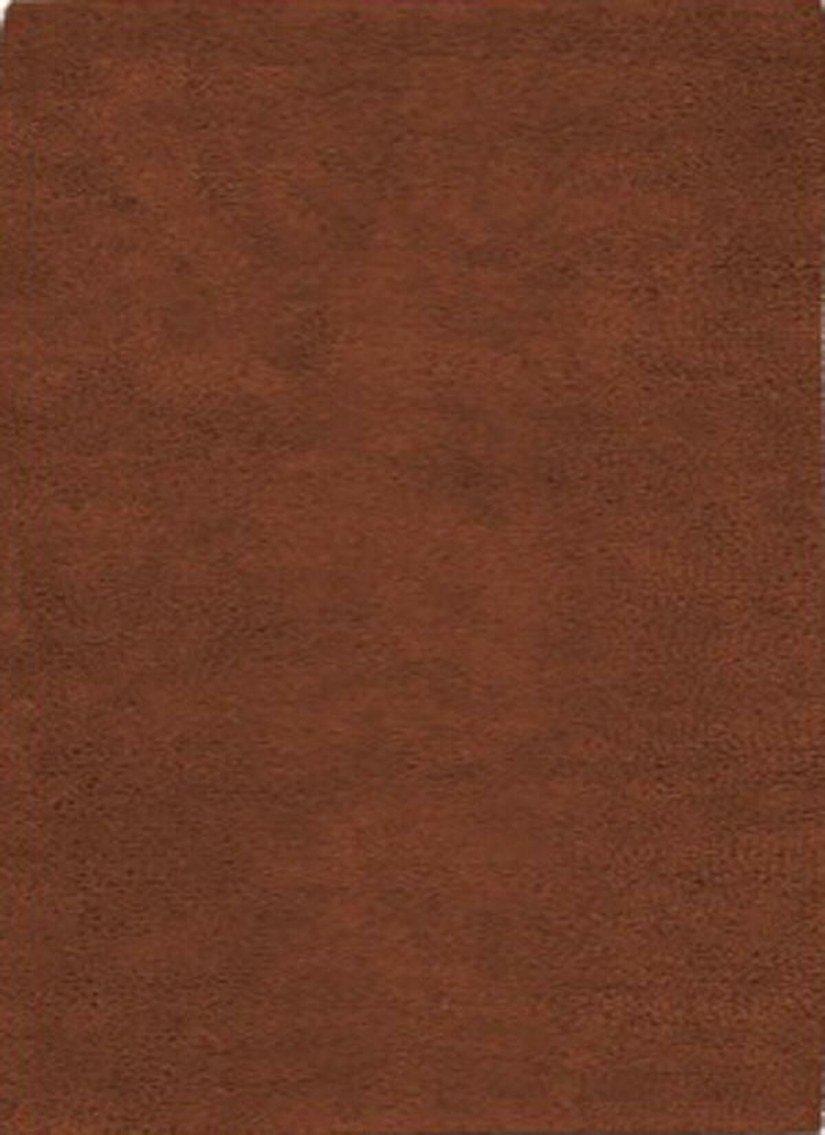 Henley Hand-Tufted Rust Area Rug Rug Size: 3' x 5'