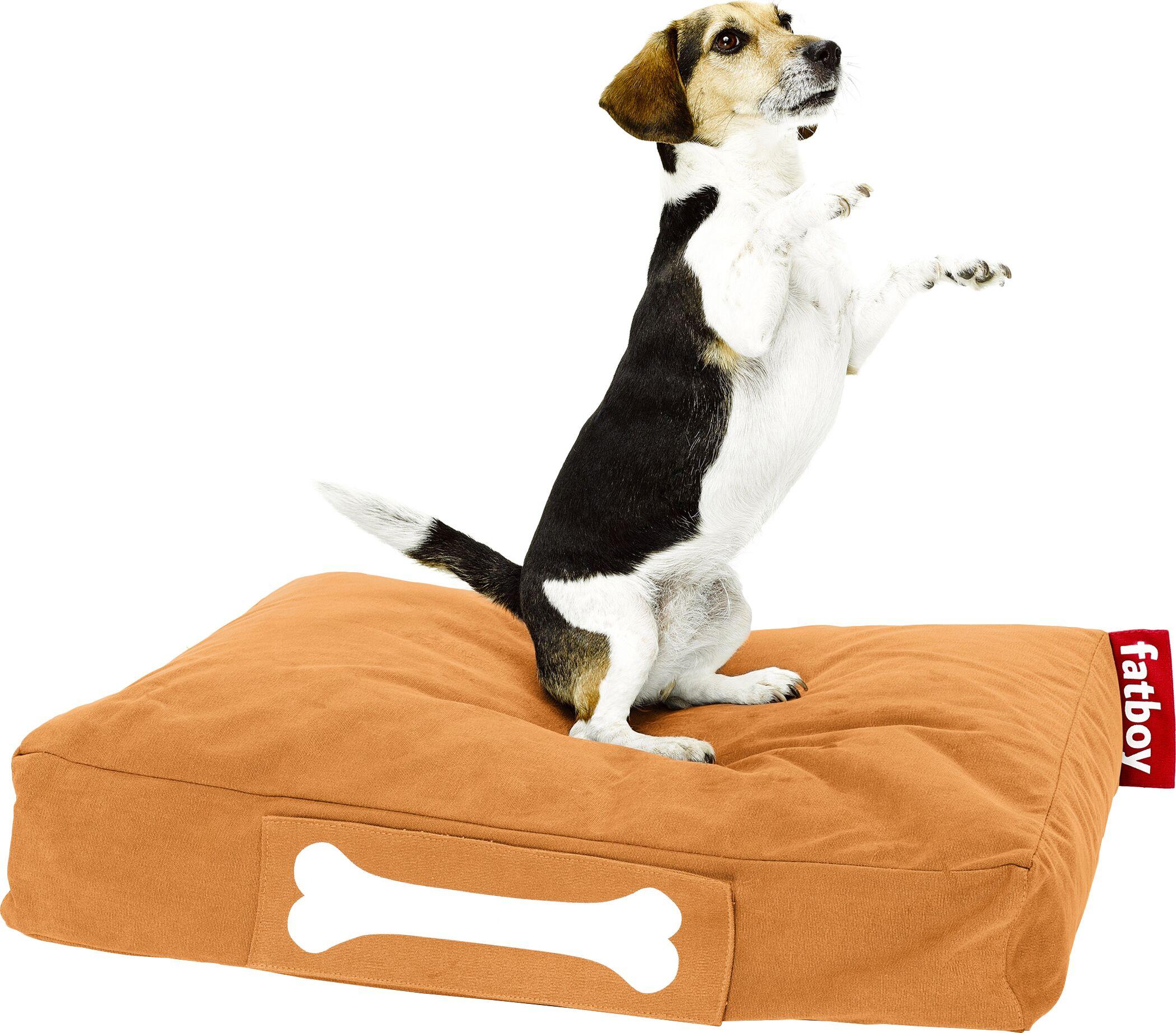Doggielounge Stonewashed Rectangular Pet Bed Size: Large (48