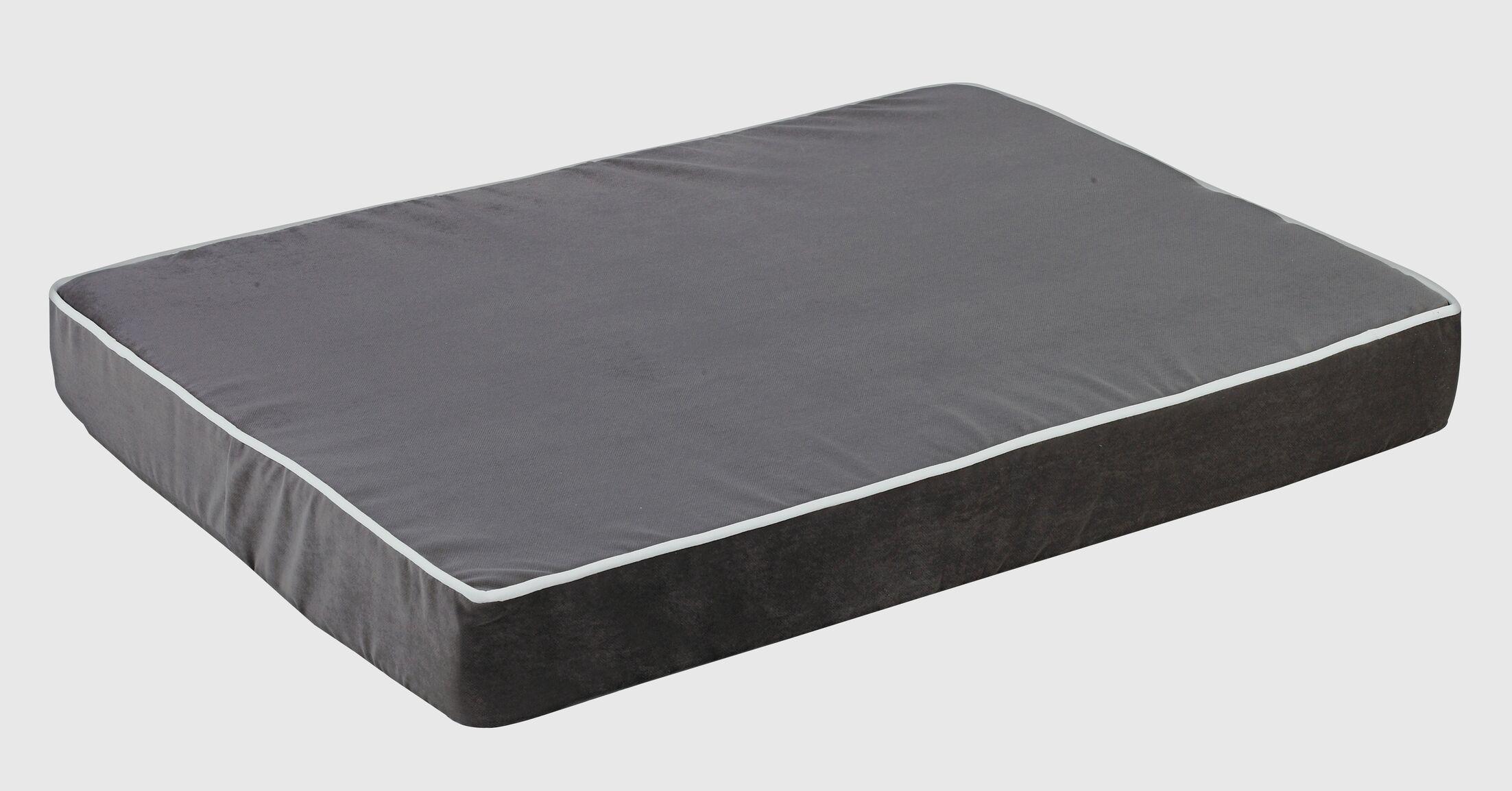 Isotonic Plat Microvelvet Dog Foam Mattress Size: Medium (30