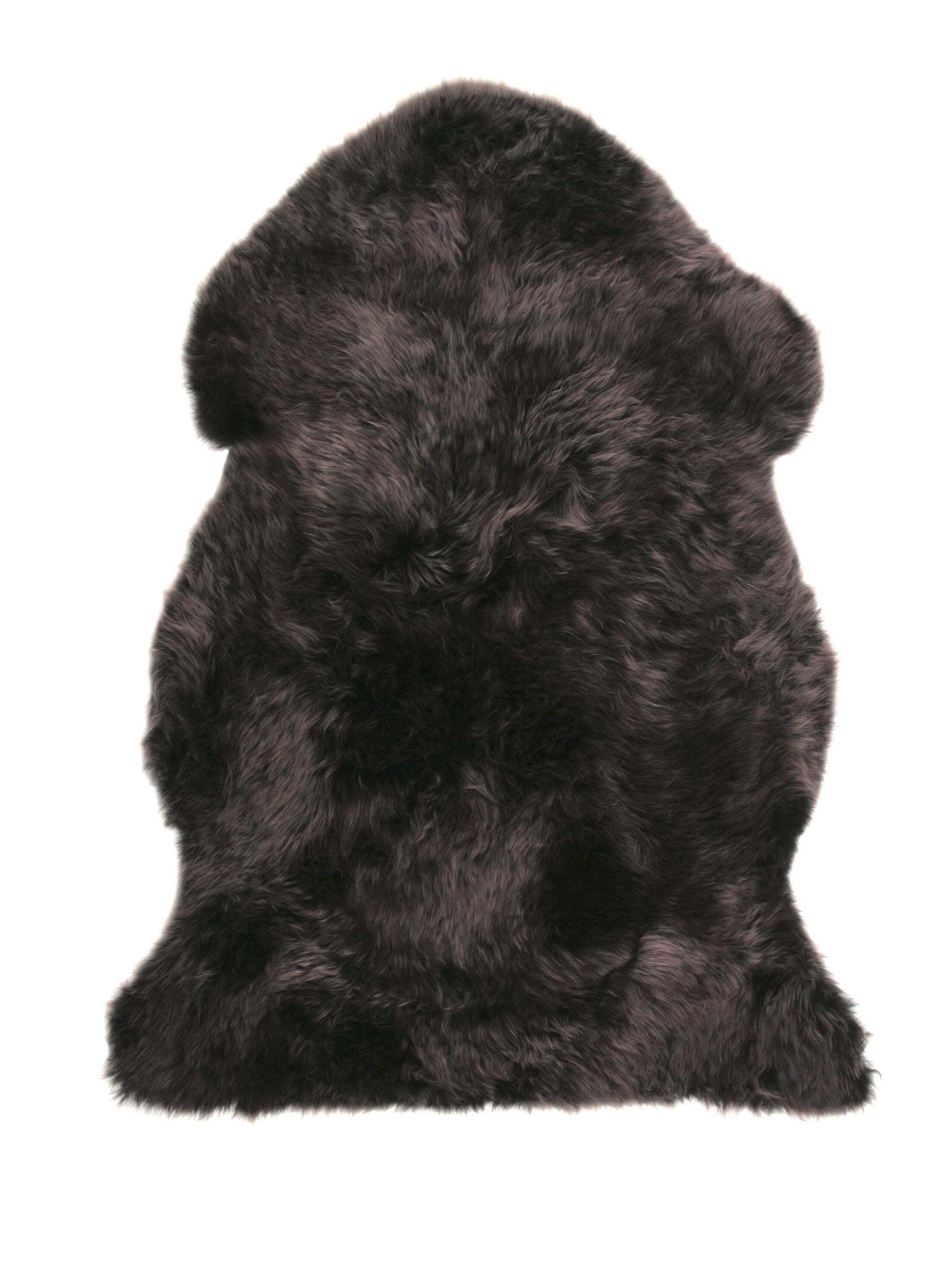 Sheepskin Walnut Area Rug Rug Size: Rectangle 2' x 3'