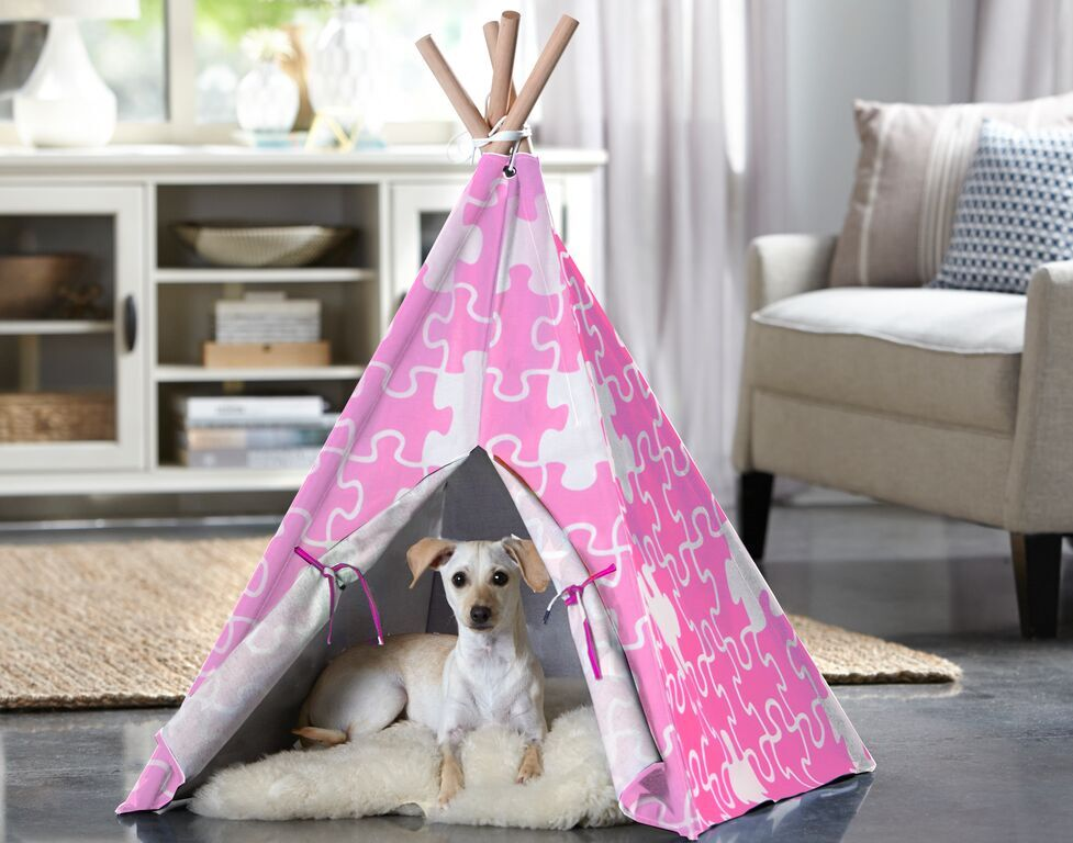 Charles Teepee Dog Bed Size: Large (39.96'' L x 39.96'' W), Color: Pink