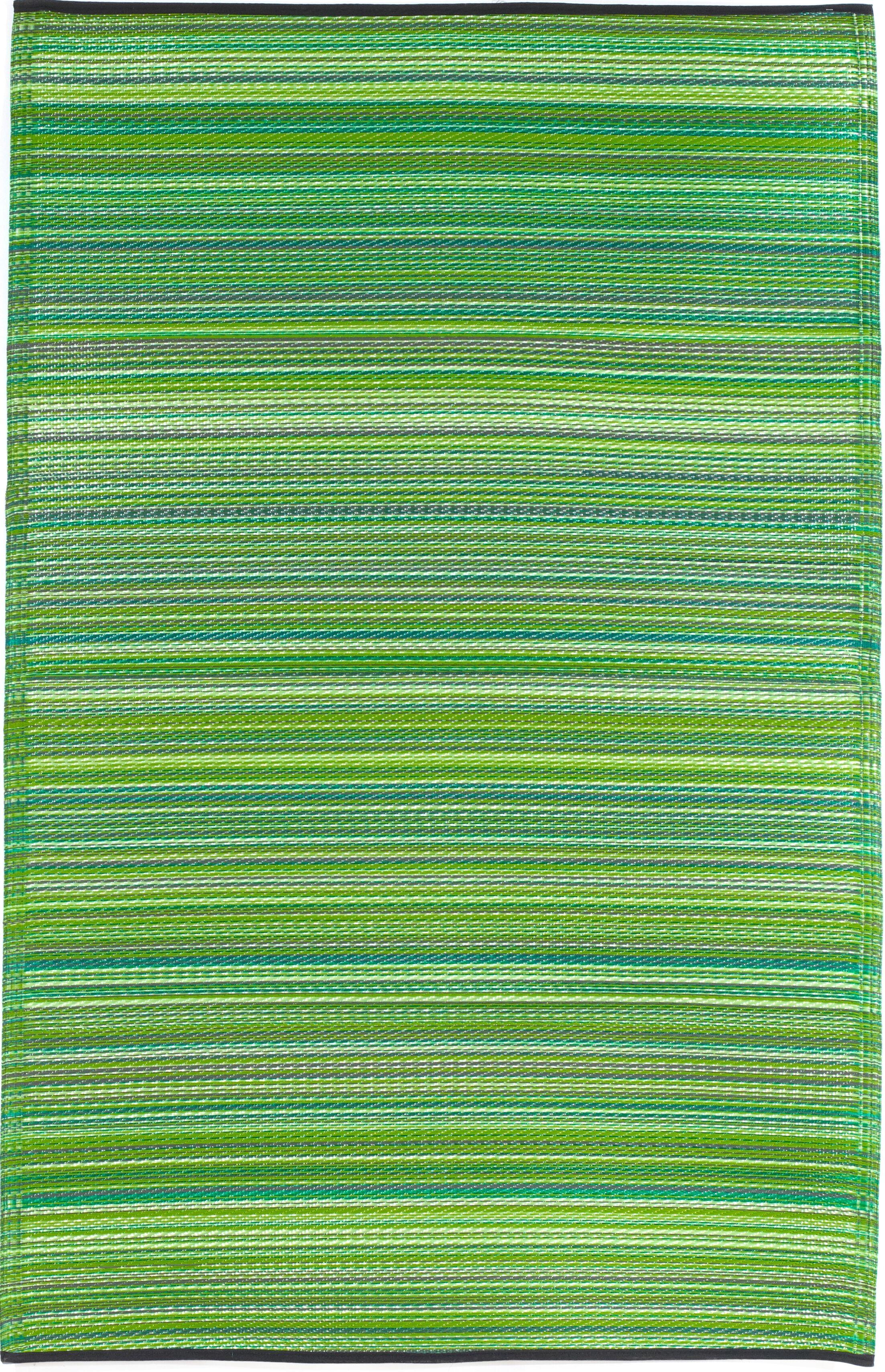 Raub Hand-Woven Green Indoor/Outdoor Area Rug Rug Size: Rectangle 5' x 8'