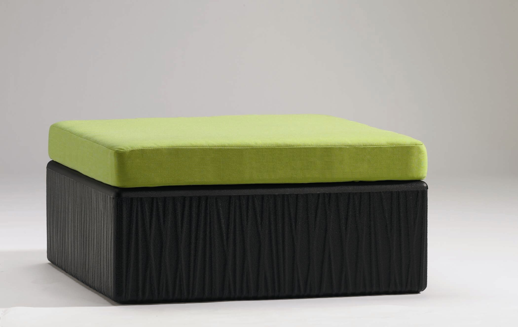 Mobilis Ottoman with Cushion Frame Color: Mobilis Black, Cushion Color: Rincon