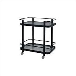Deluxe Obscure Bar Serving Cart Finish: Metropolitain