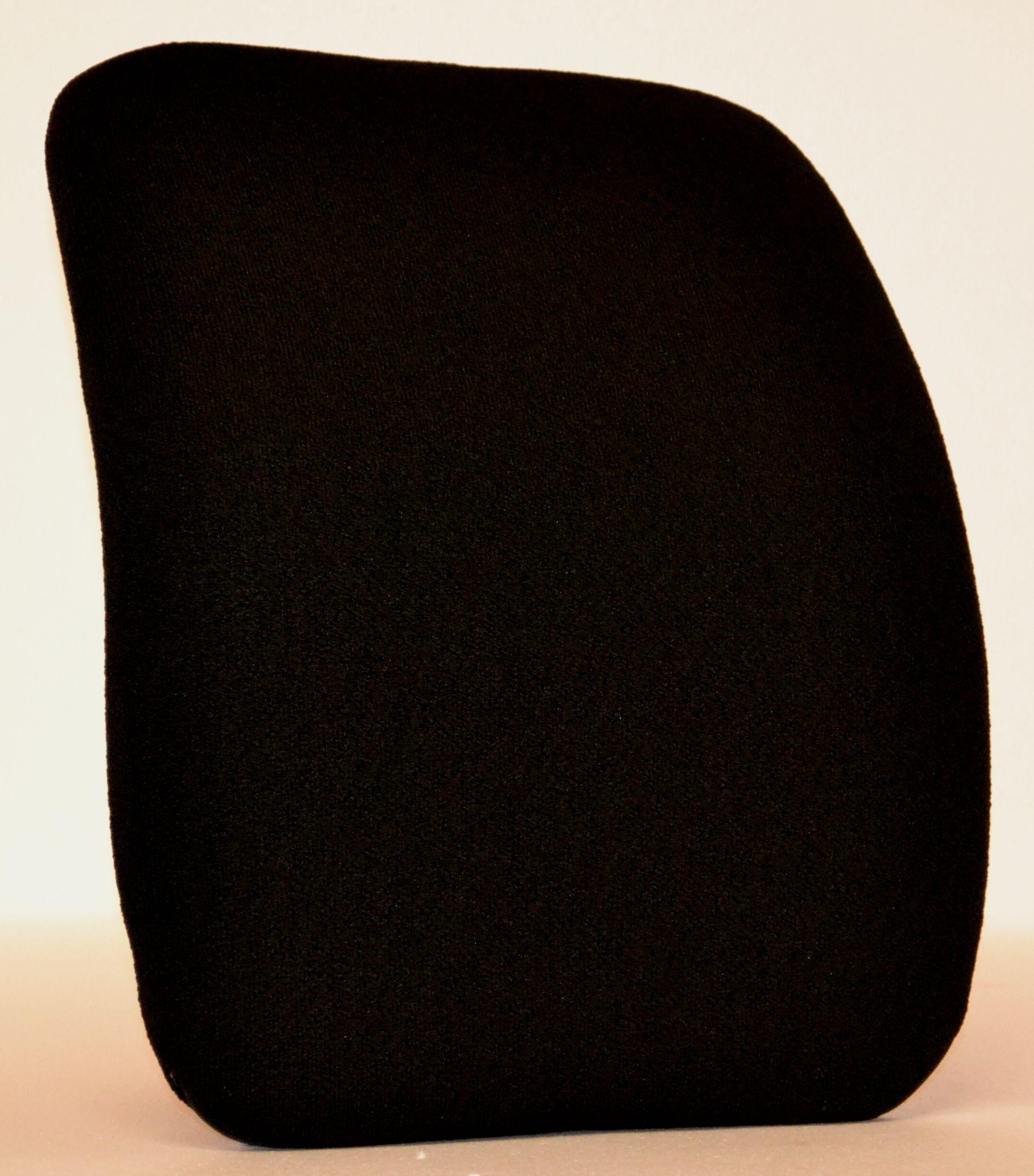 Keri Back Chair Cushion Color: Black