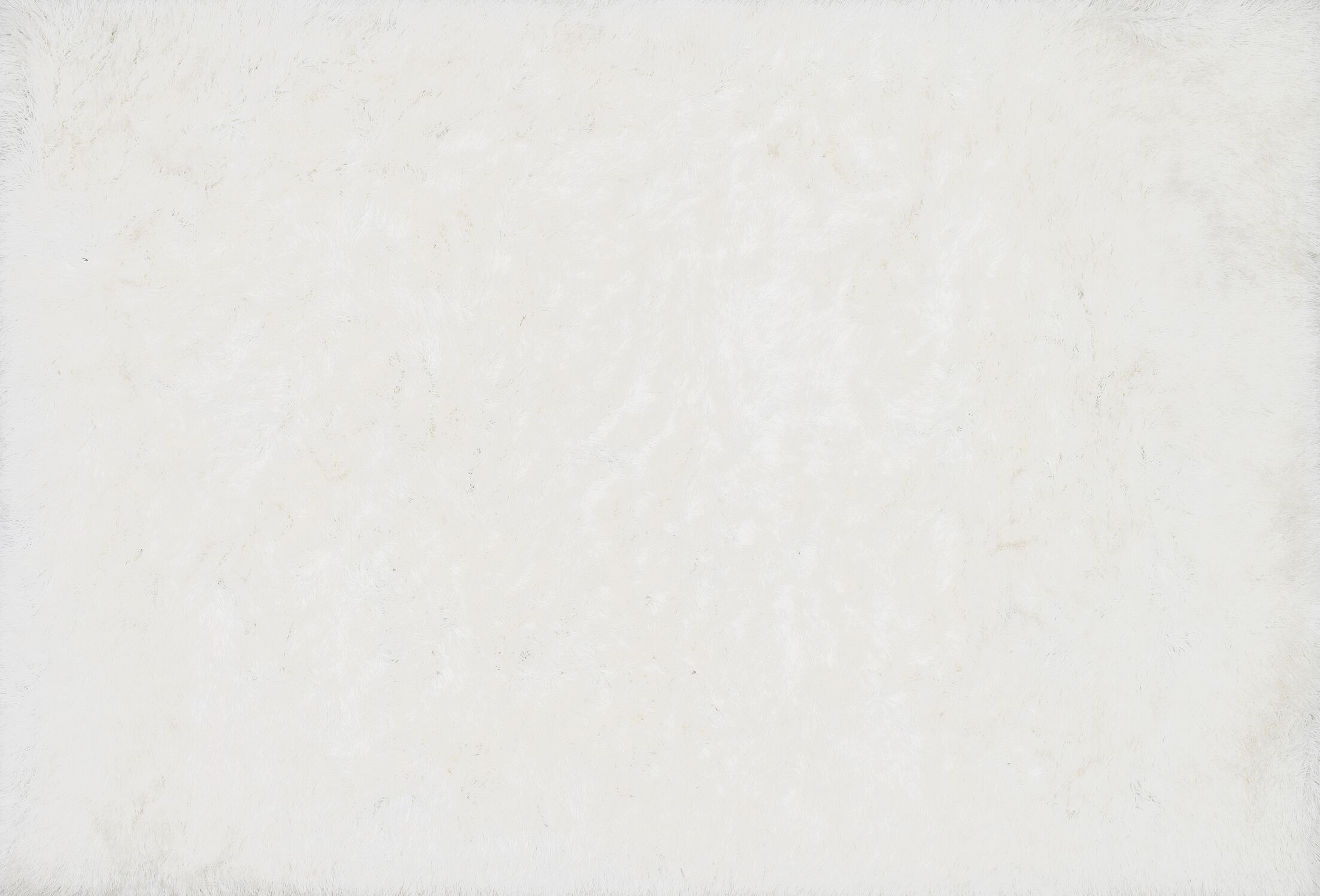 Siipola Shag Hand-Tufted Area Rug Rug Size: Rectangle 3'6