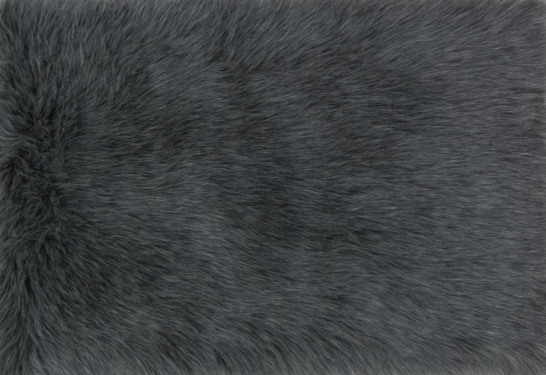Zamorano Faux Fur Graphite Area Rug Rug Size: Rectangle 3' x 5'