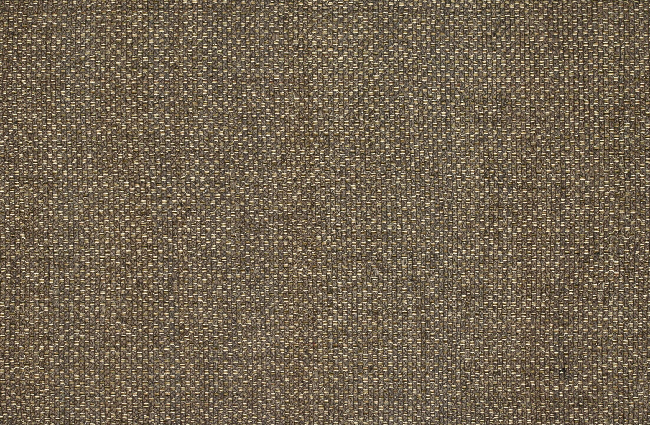 Reiche Hand-Woven Brown Area Rug Rug Size: Rectangle 9'3