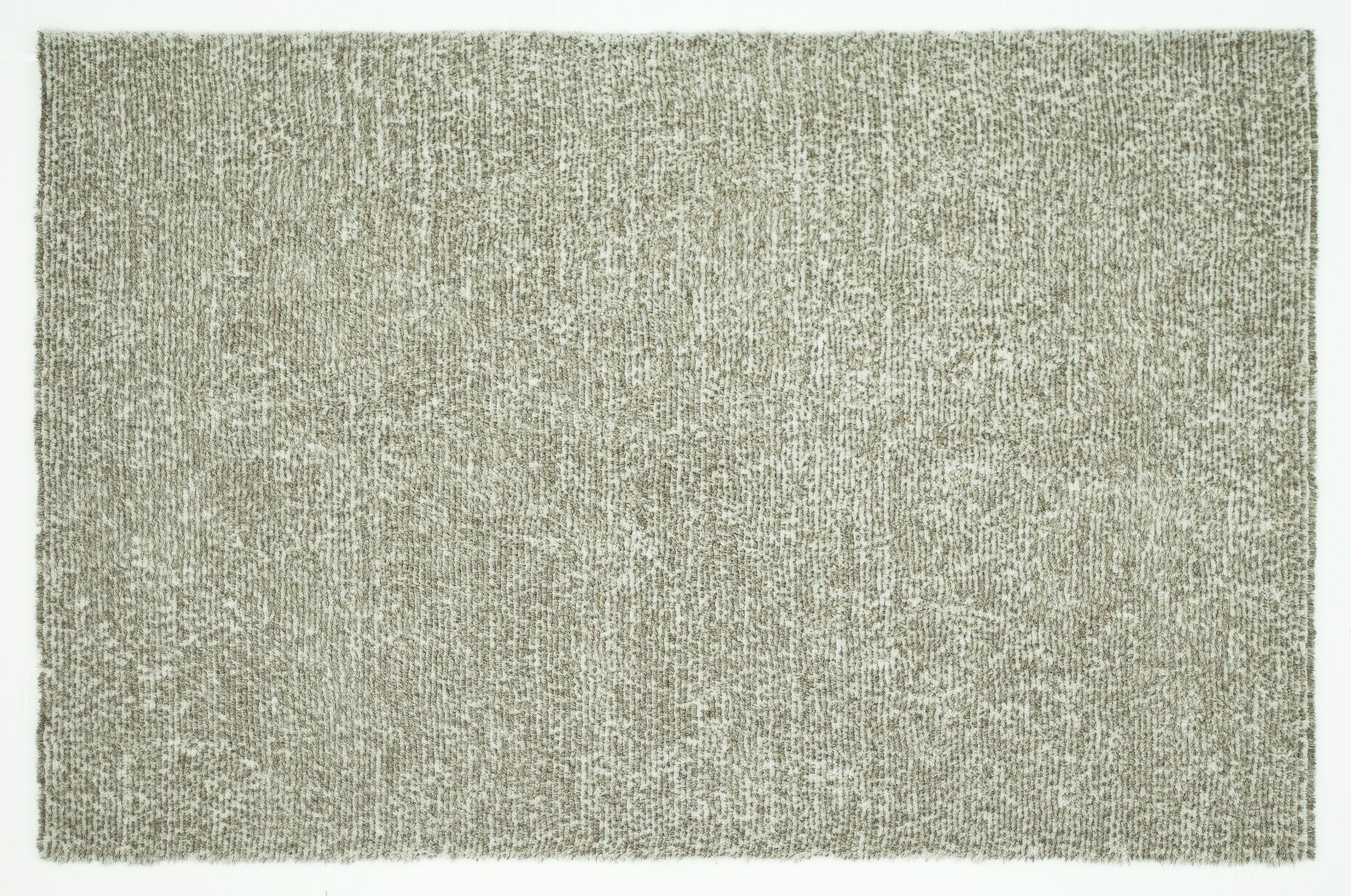 Baryzhikova Hand-Tufted Light Gray Area Rug Rug Size: Rectangle 5' x 7'6