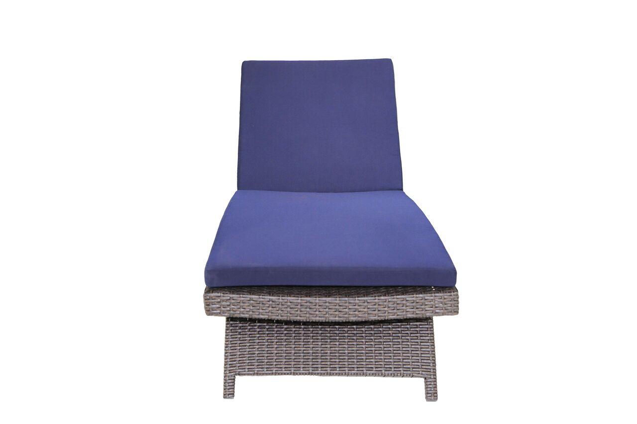 Signature Rosarita Chaise Lounge with Cushion