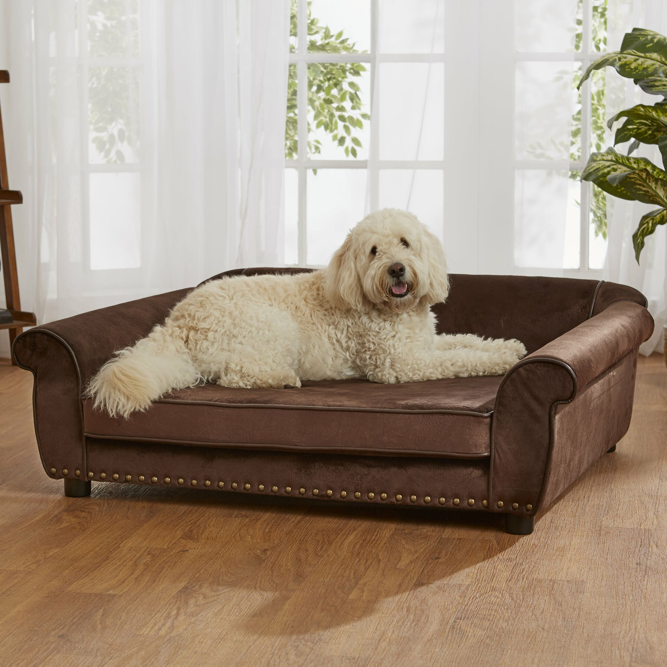 Constantine Dog Sofa with Storage Pocket Color: Brown