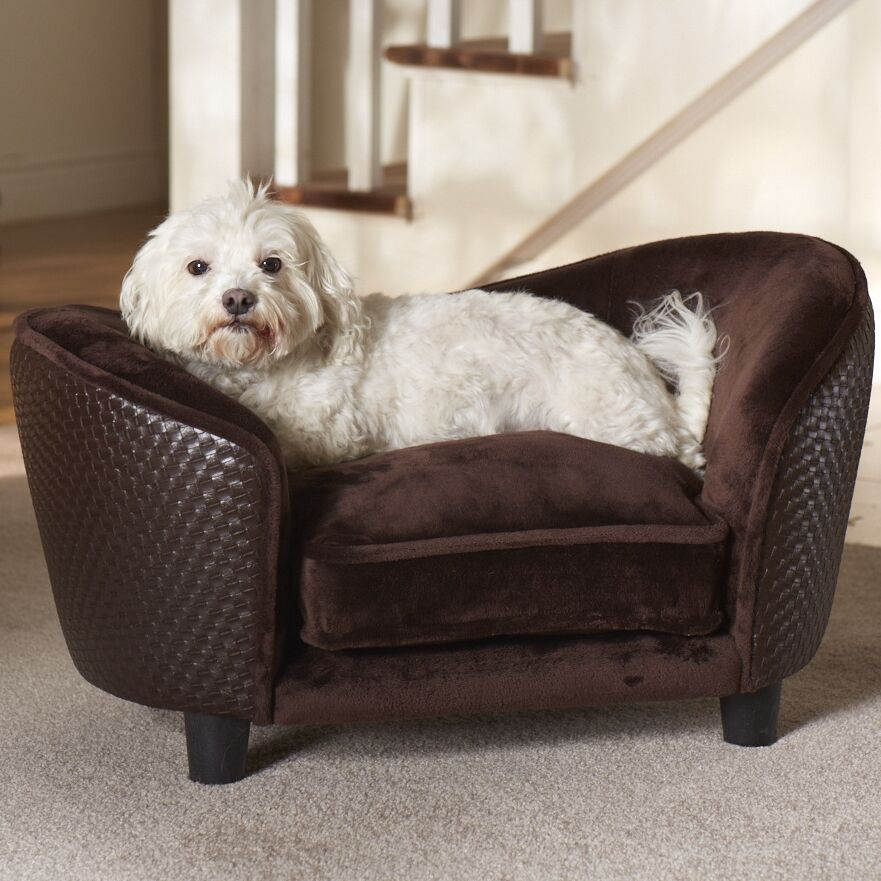 Constantine Snuggle Dog Sofa with Loft Cushion Color: Brown, Size: 26.5