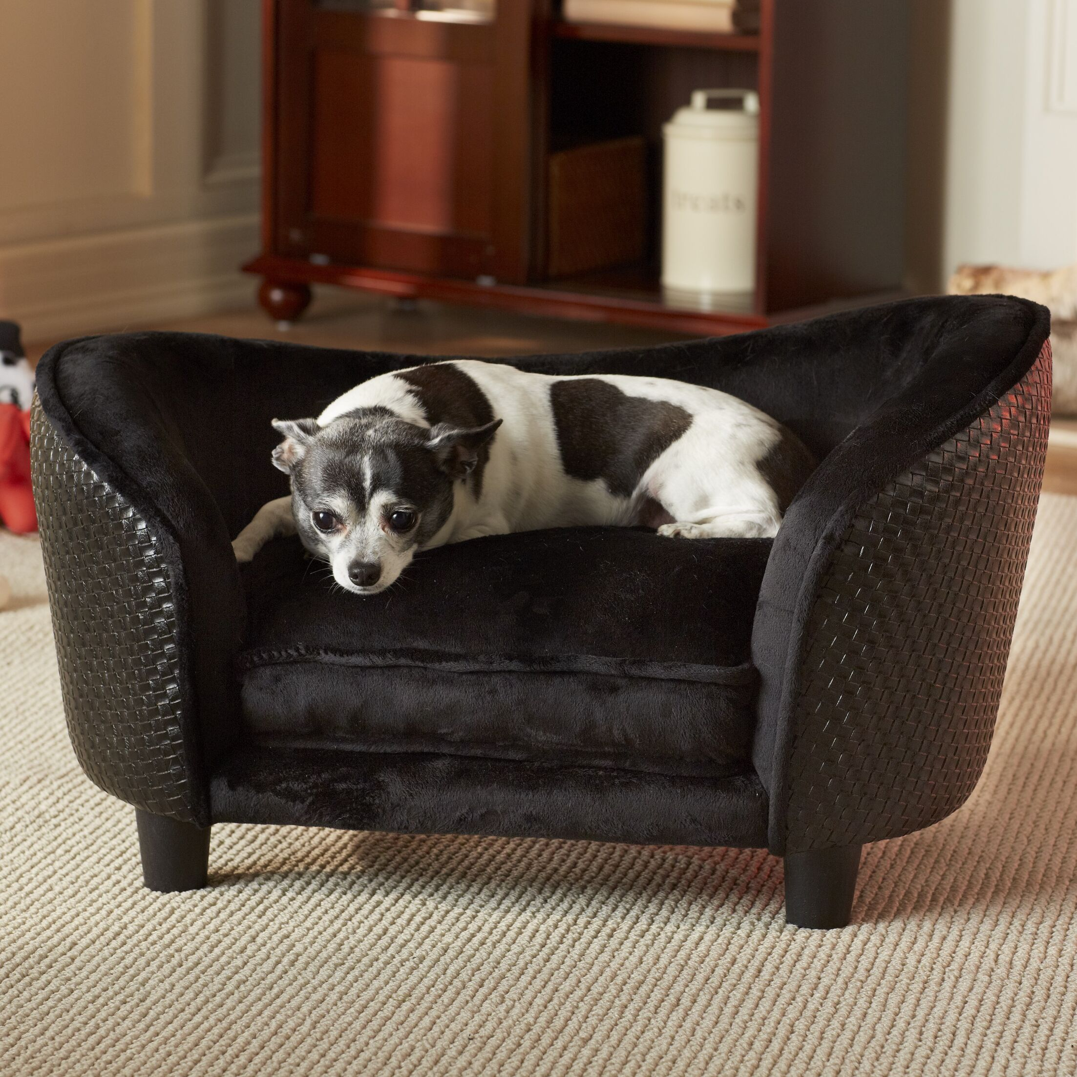 Constantine Snuggle Dog Sofa with Loft Cushion Color: Black, Size: 26.75