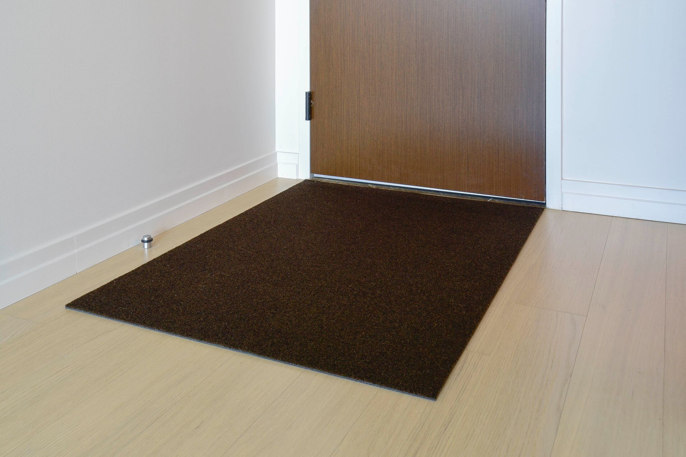 Doormat Mat Size: Rectangle 3' x 4', Color: Walnut