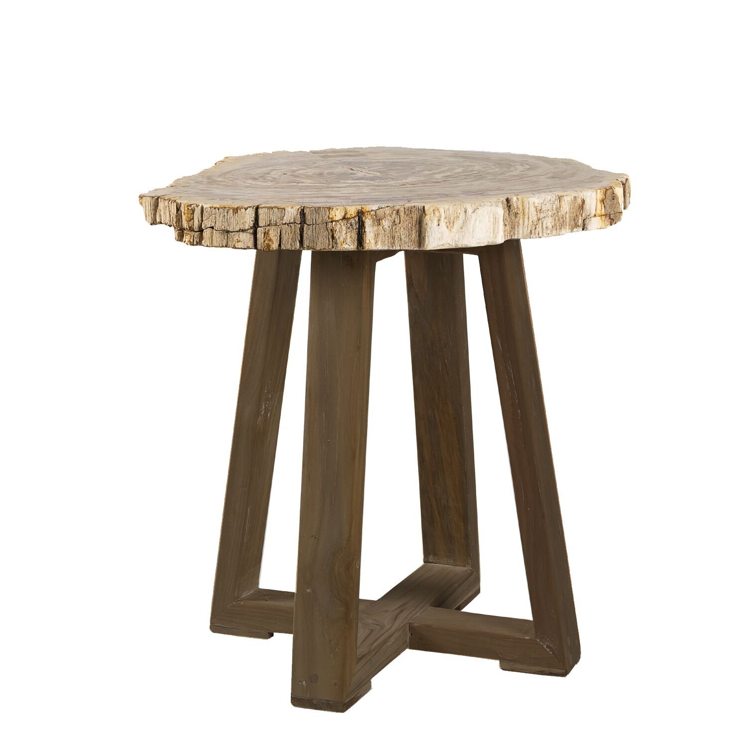 Griffis Petrified Wood End Table