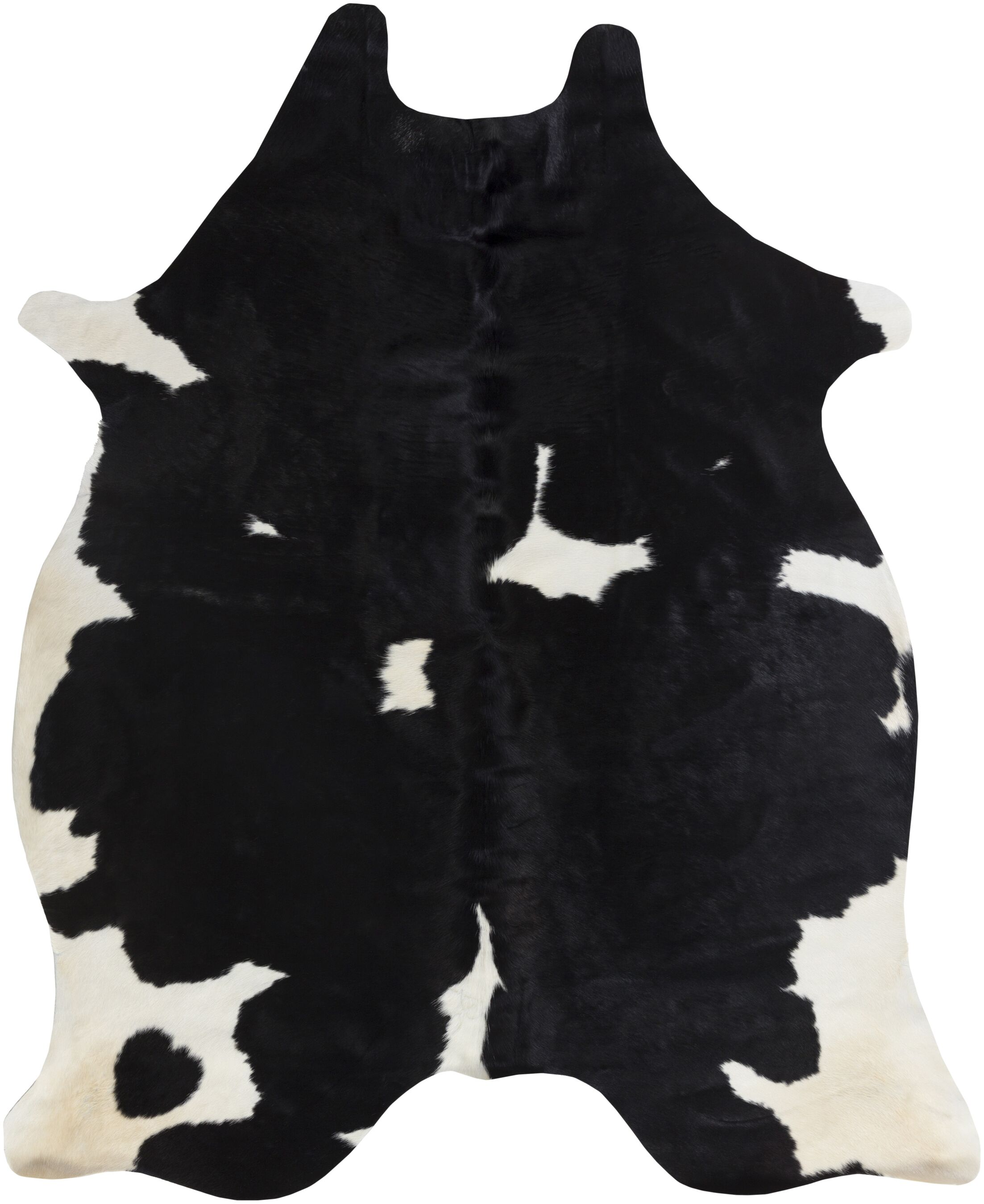 Pires Hand-Tufted Black/White Area Rug