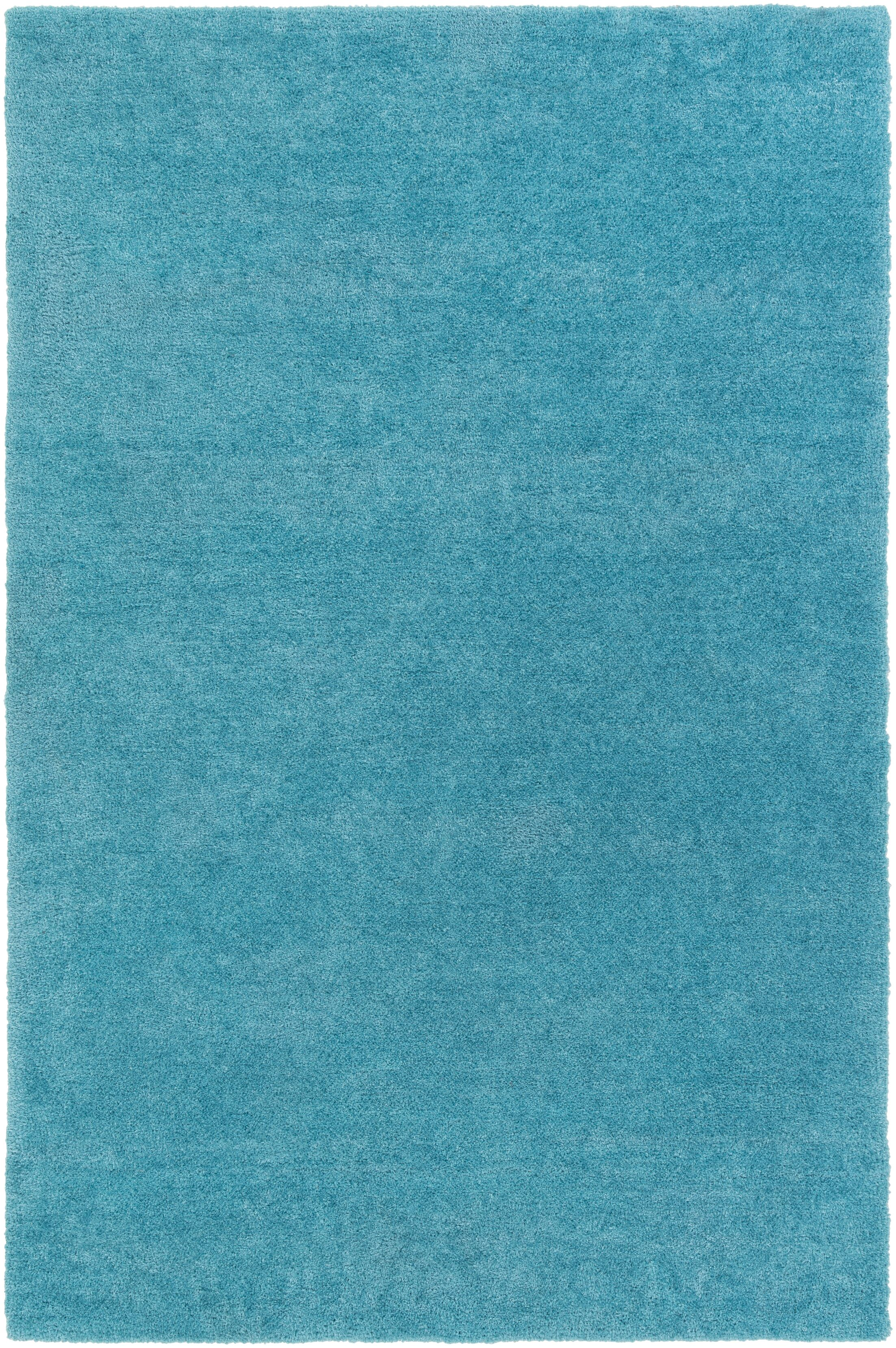 Eckman Turquoise Area Rug Rug Size: Rectangle 7'6