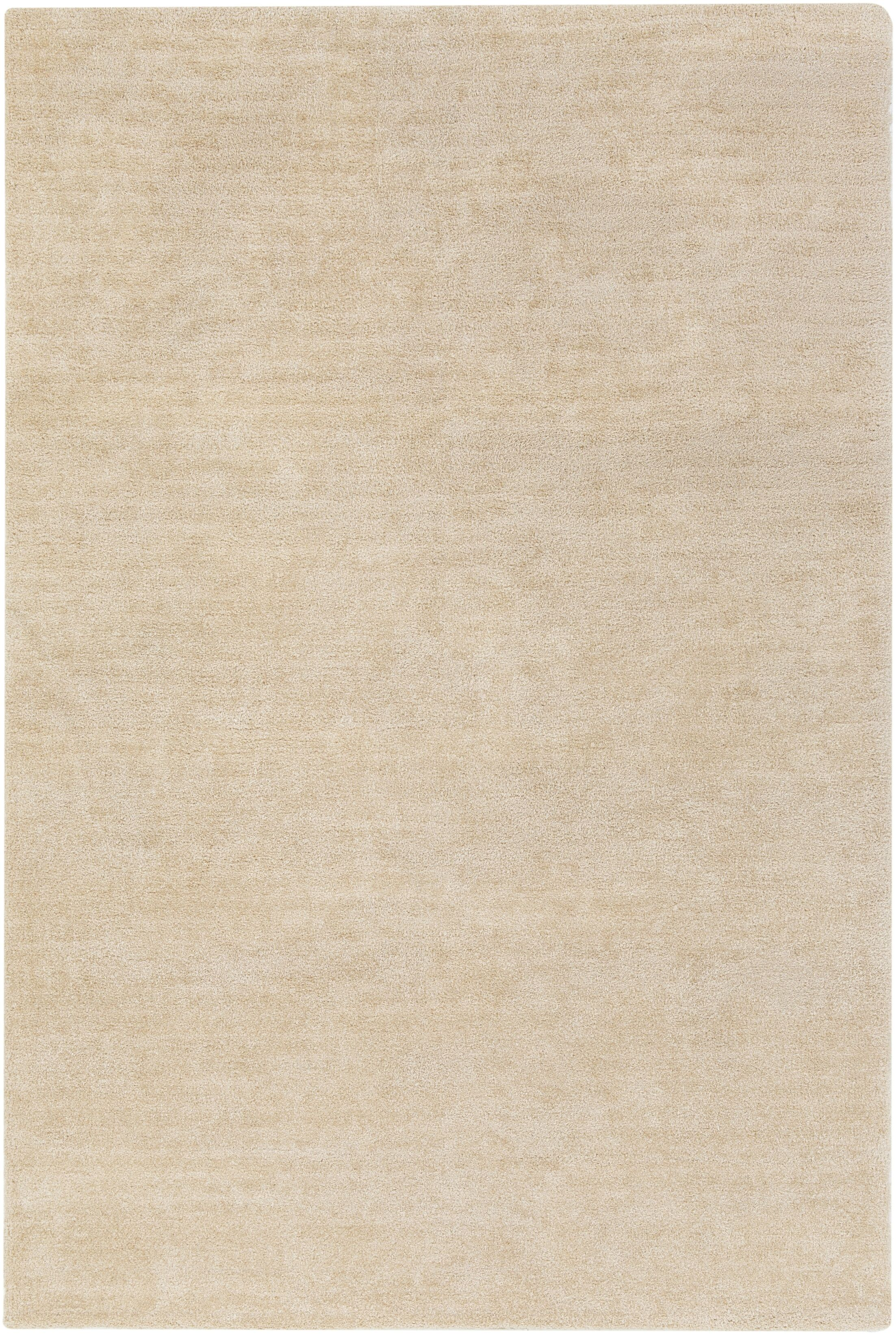 Eckman Beige Area Rug Rug Size: Rectangle 8' x 11'