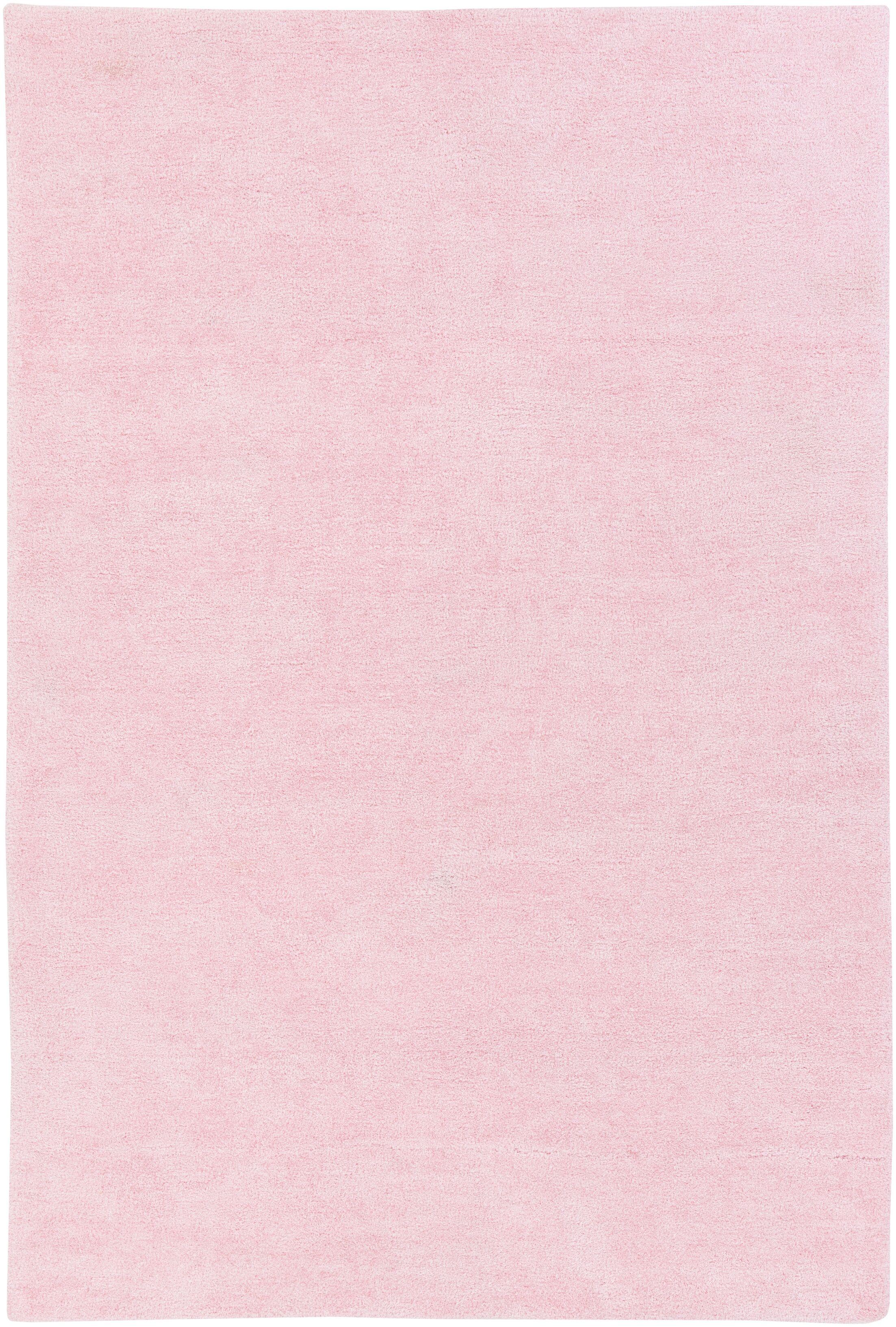 Eckman Light Pink Area Rug Rug Size: Rectangle 8' x 11'