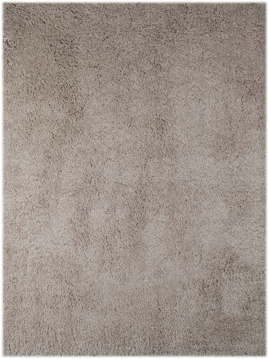 Chaves Champagne Area Rug Rug Size: Rectangle 3'6
