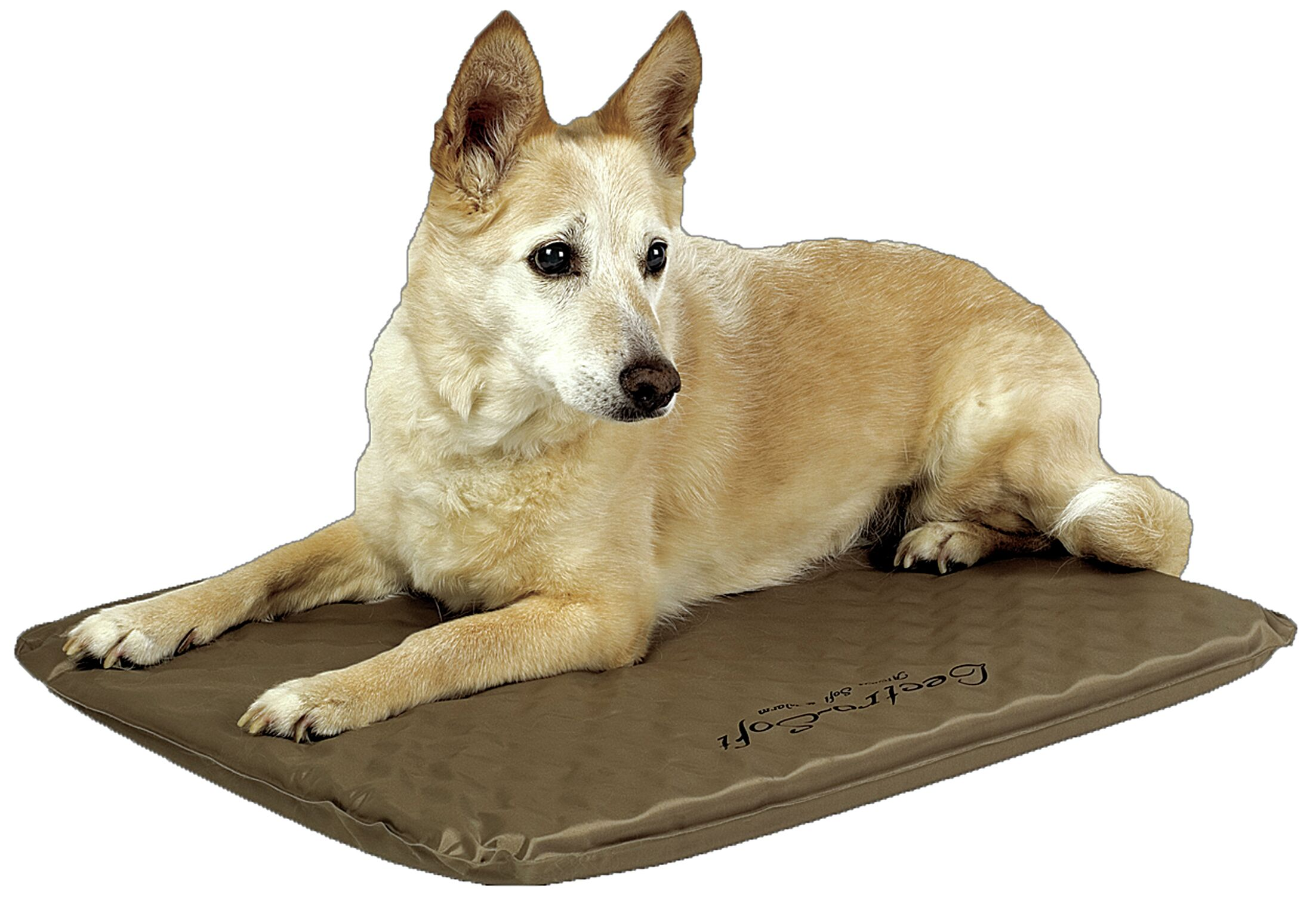 Lectro-Soft� Heated Dog Pad with Cover Size: Medium (24