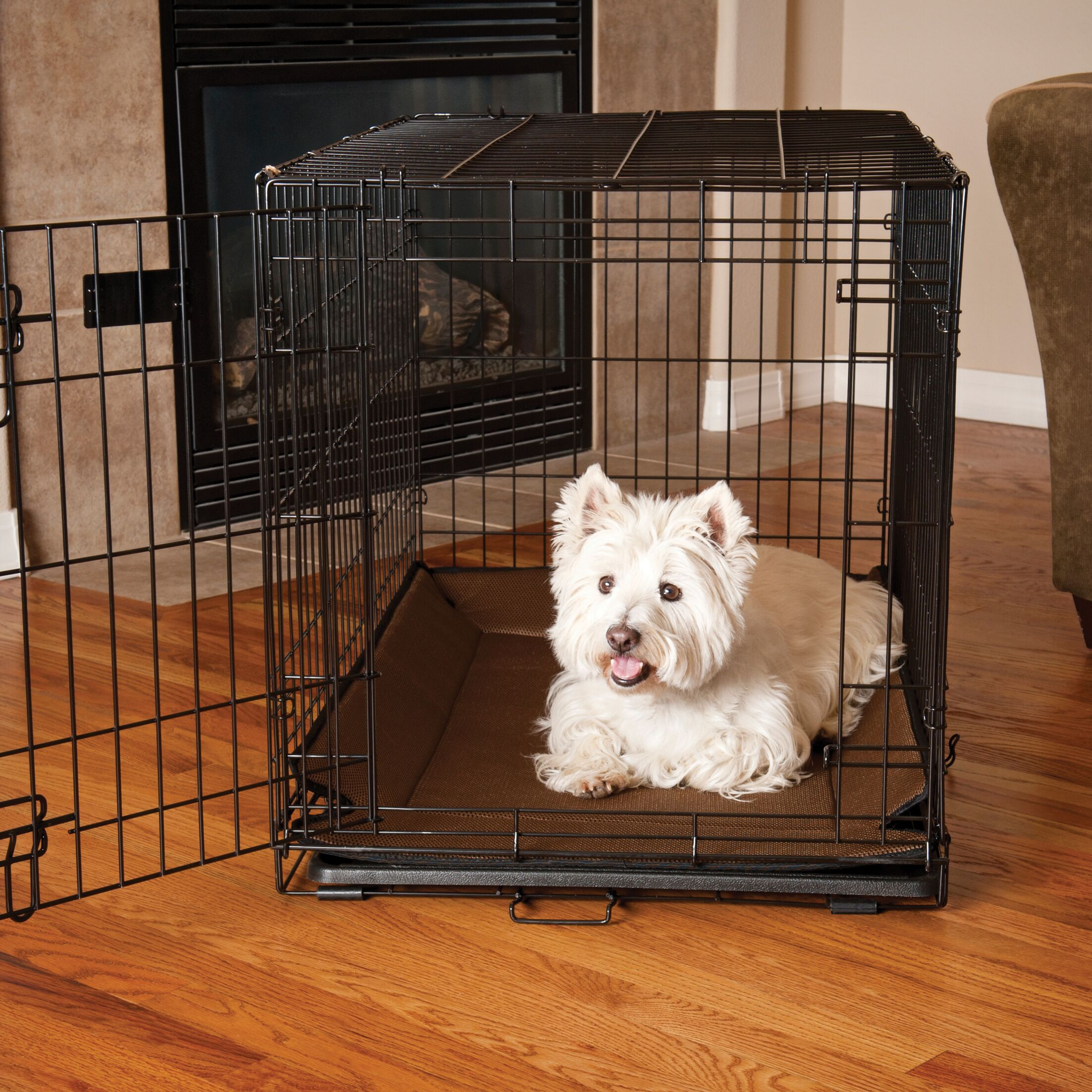 Odor-Control Crate Pad Cover Color: Mocha, Size: 0.5