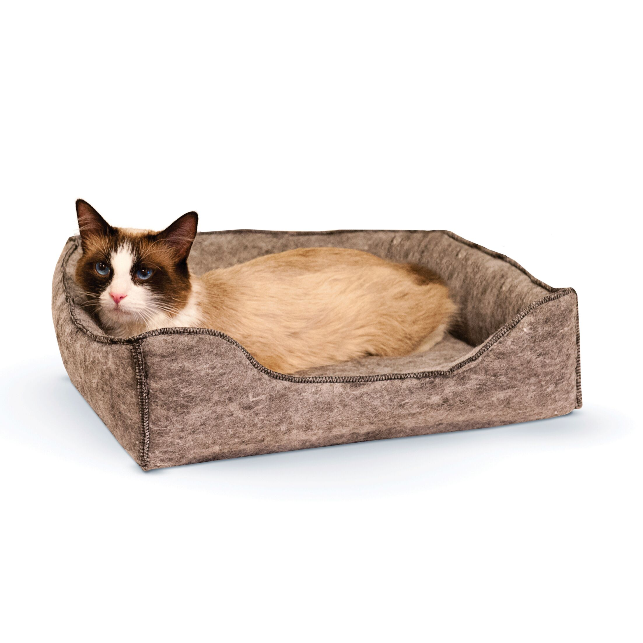 Amazing Kitty Lounge Sleeper