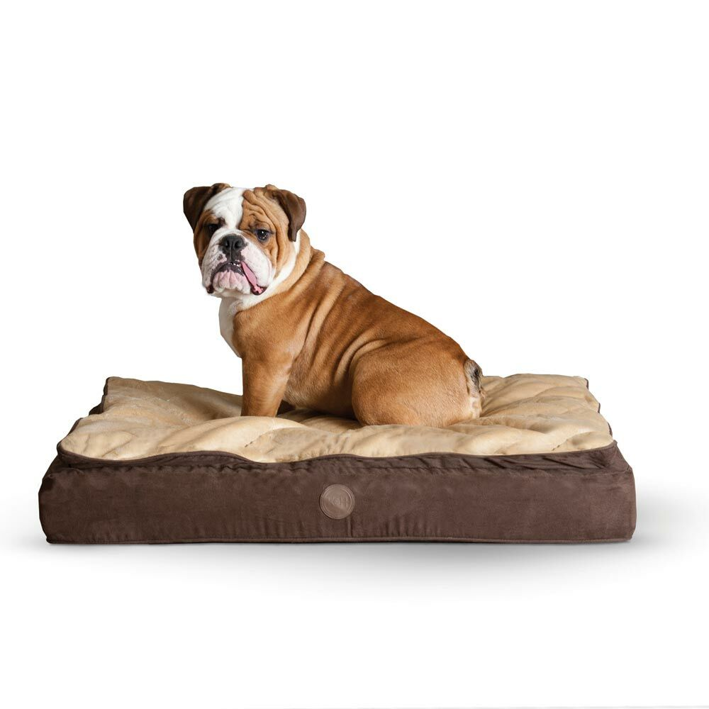 Feather Top Ortho Dog Bed Color: Chocolate / Tan, Size: Medium